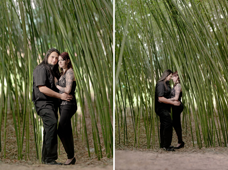 couple poses for engagement photos with markow photography in a bamboo garden
