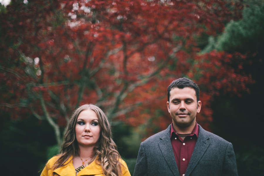 fall colors engagement photos