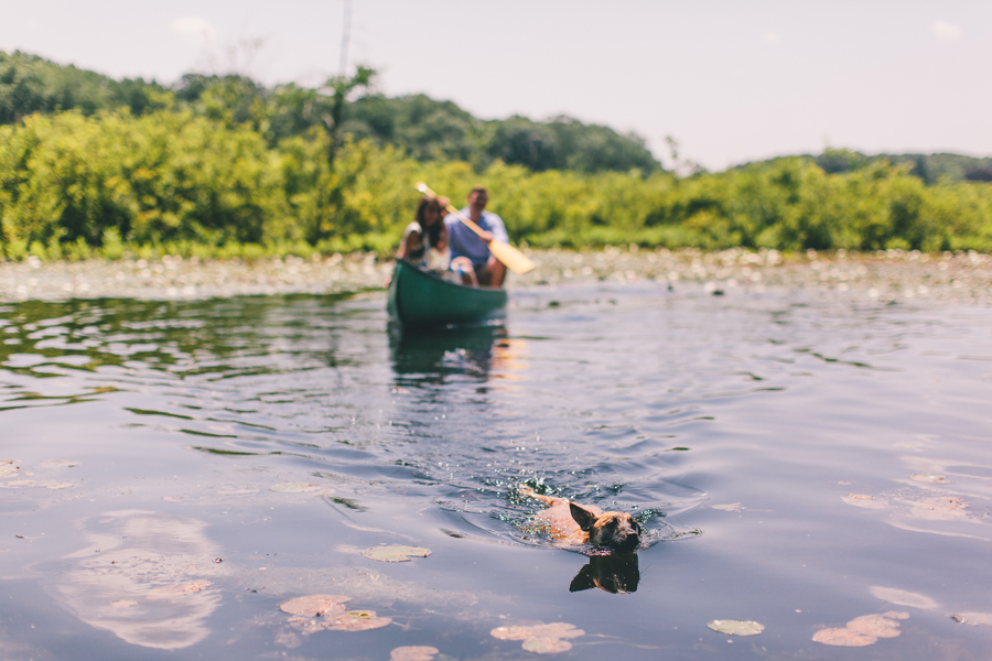 Swimming Dog at Engagement Session