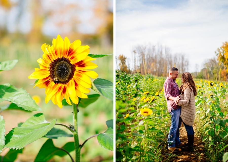 Engagement Photos with Sunflowers NJ