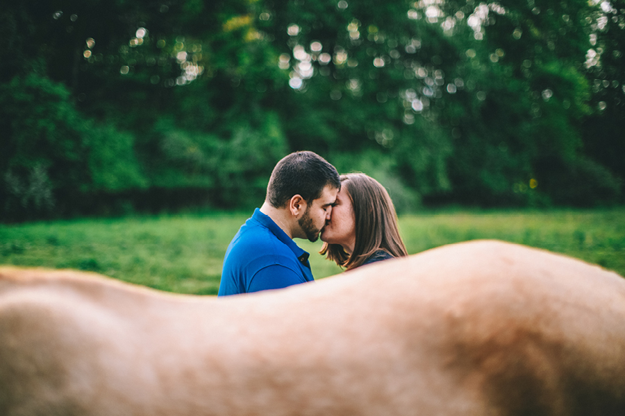 Farm Engagement Photos NJ