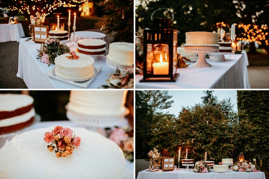 WillowWood-Arboretum-Wedding_0149