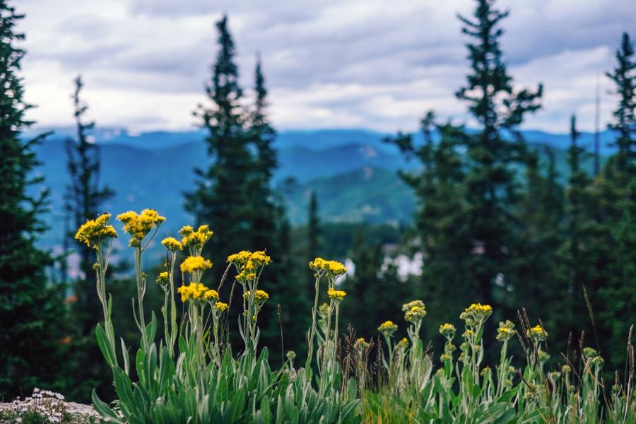 Travel-Photography-Denver-Colorado_0037