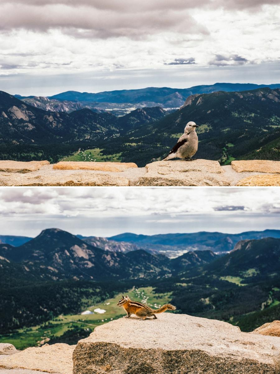 Travel-Photography-Denver-Colorado_0070