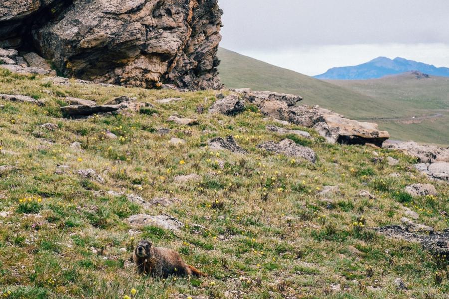 Travel-Photography-Denver-Colorado_0079