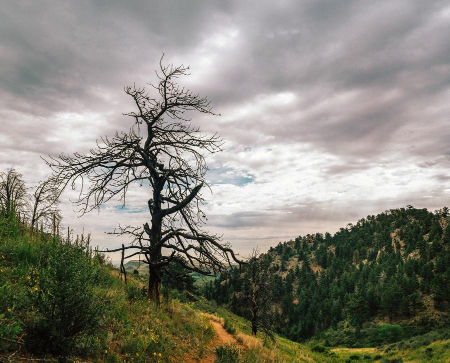 Travel-Photography-Denver-Colorado_0100