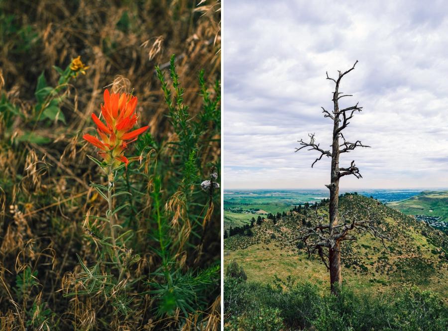 Travel-Photography-Denver-Colorado_0106