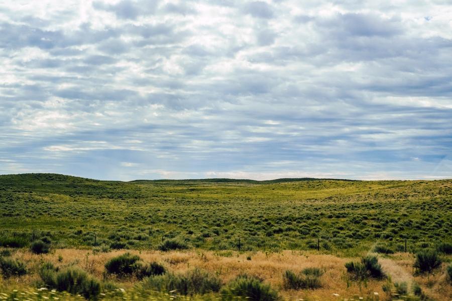 Travel-Photography-Denver-Colorado_0112