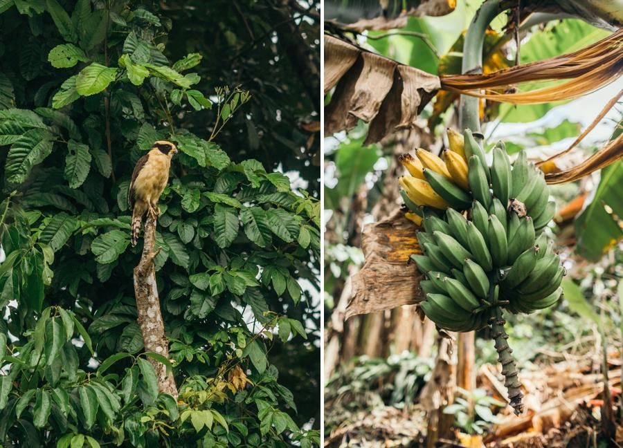 costa-rica-nicaragua-travel-photography_0017