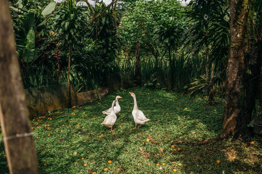 costa-rica-nicaragua-travel-photography_0026