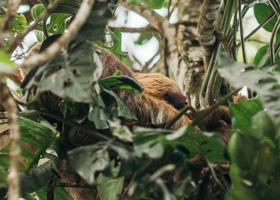 costa-rica-nicaragua-travel-photography_0029