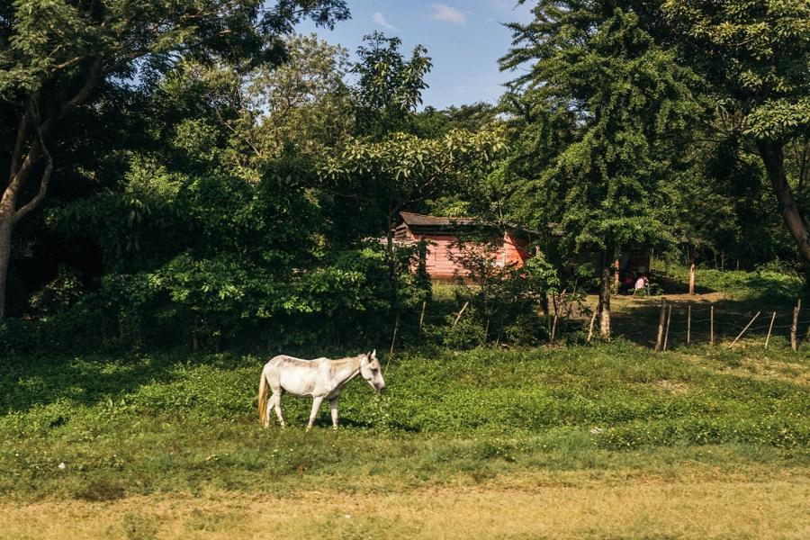 costa-rica-nicaragua-travel-photography_0055